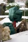 Pflanzen Winterschutz Rosenhaube 75x80cm grün, 2er Set
