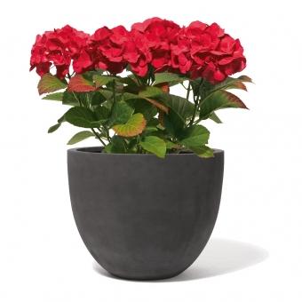 Blumenkübel Fiberglas Salford Anthrazit