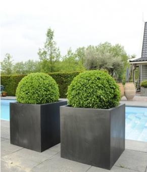 """Fiberstone Pflanzkübel """"Block"""" schwarz 30x30x30cm"""
