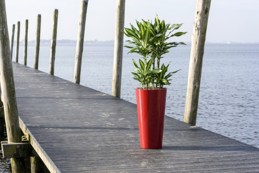 Kunststoff Blumenkübel Runner Hochglanz 70cm